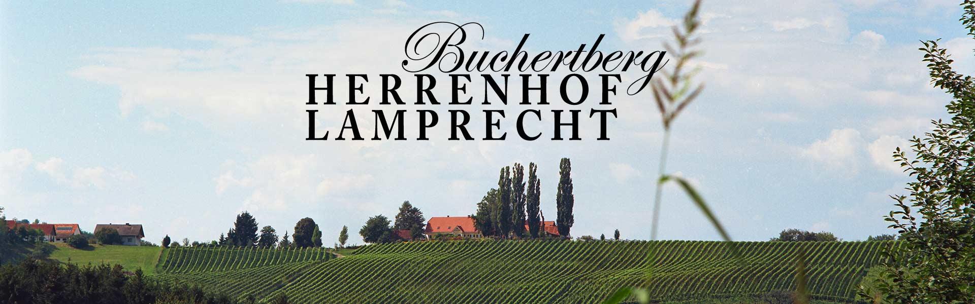 Der Buchertberg - Herrenhof Lamprecht